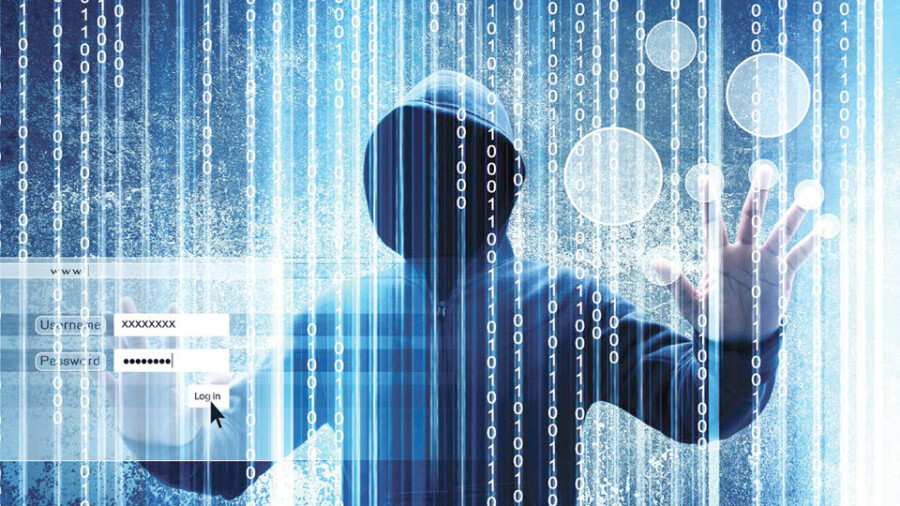 Trying to Stop Web Fraud Before It Happens