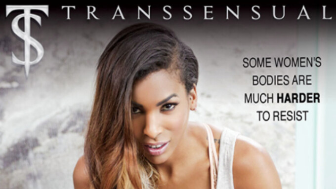 TransSensual Releases 'TS Massage 3'