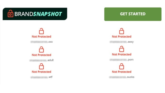 Network Solutions' Brand-Protection Program Targets Adult TLDs