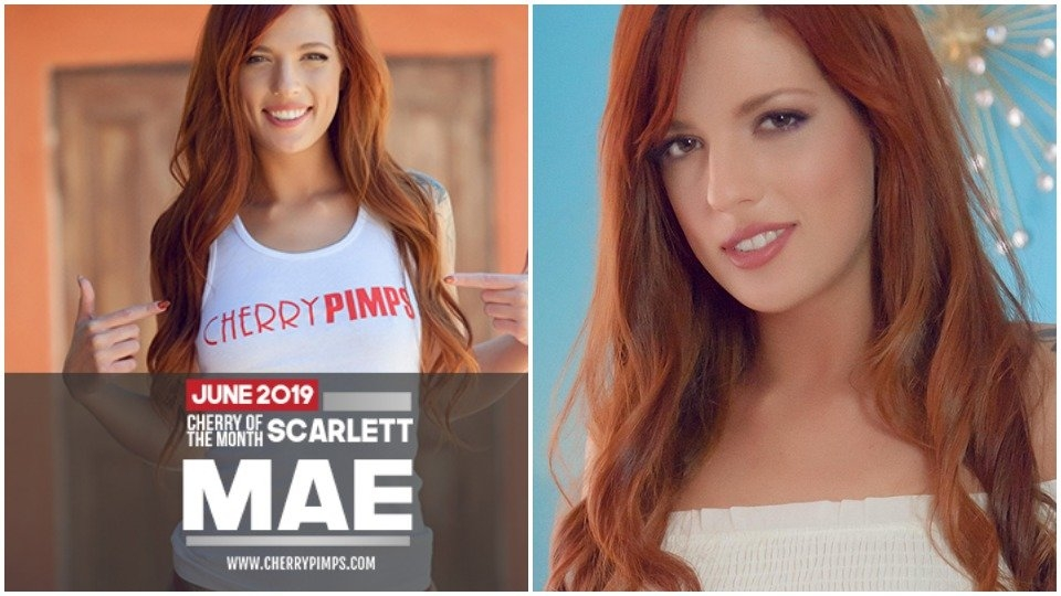 Scarlett Mae is Cherry Pimps' June 'Cherry of the Month'