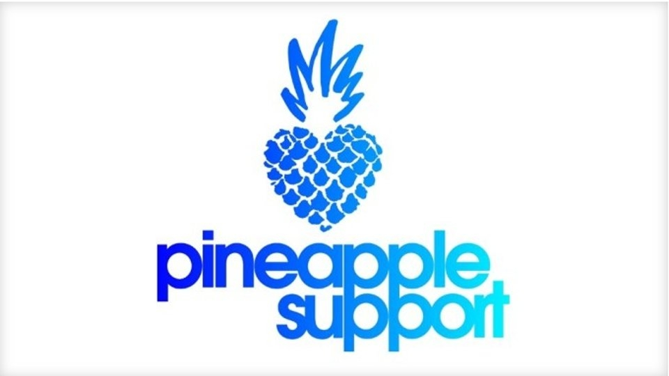Pineapple Support Partners With Blue Pearl Therapy for 5-Week Program