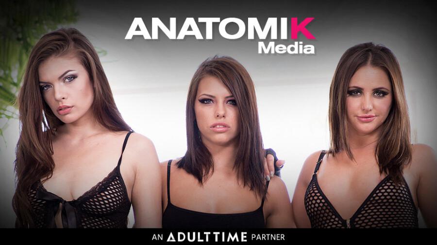 Anatomik media