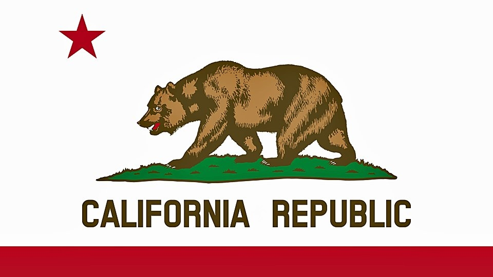 California Consumer Privacy Act Now in Effect, Adult Businesses Seek to Comply