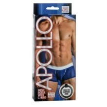 Apollo - Mesh Boxer With C-Ring - M/L