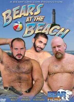 Bears At The Beach