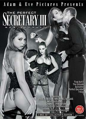 Perfect Secretary 3  New Recruit