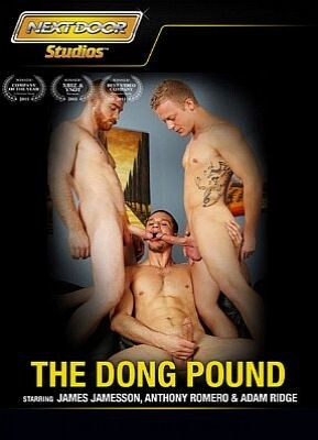 The Dong Pound